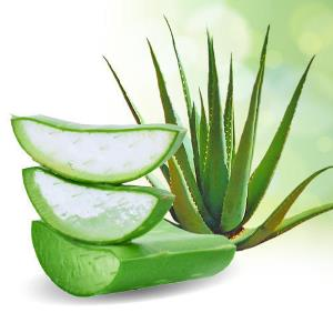 What is aloe vera juice?
